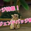 レジェンドバッジ完全攻略ガイド!【バトロ編(5)】