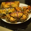 今年も上海蟹(大闸蟹)の季節がやってきました。