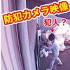 犯人捕獲大作戦 (予定) 防犯カメラ映像