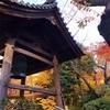 東京おサボりスポットの紅葉状況【品川駅チカ日本庭園】