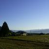 駒ケ根高原マラソン・ロードレース