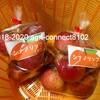 シナノリップを収穫&直売所へ初出荷しました!