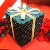 孫へのクリスマスプレゼント。今年は2つ。