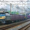 6月22日撮影 東海道線 大磯~二宮間 貨物列車① ゼロロク サメ 64-1000