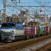 1月25日撮影 東海道線 平塚~大磯間 貨物列車4本撮影
