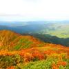 太平山登山|秋田市のシンボル!山頂からの景色や紅葉をお伝えします!