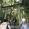 巡禮記 熊野三山ツアーにいってきた その①衝撃の那智のお滝