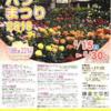 バラ満開の鎌倉文学館