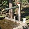 古い写真が見つかりました ~ 普濟寺主催慰霊祭法要記念 ~