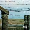"""""""閲覧注意""""的な映像 ◆ 「夜と霧」"""