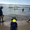 【2019年1月】ハワイ旅行(3日目)-2日連続の病院!?-