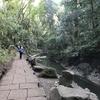 東京都内でも気軽に自然が味わえる癒しスポット「等々力渓谷」に行ってみた