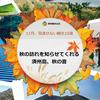 済州島(チェジュ島) 11月、見逃せない観光10選