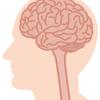 【読了・脳を最適化すれば能力は2倍になる】アウトプット記録