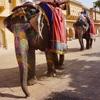 Day23:Jaipur