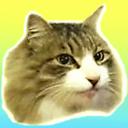 ~ネコと神津島にやってきた~