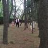 9/25 辰巳の森緑道公園