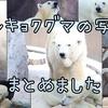 【写真】肉食系クマ、ホッキョクグマの写真まとめ【動物園】