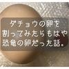 美里オーストリッチさんからダチョウの卵もらったら、もはや恐竜の卵だった話。