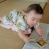 【生後6ヶ月赤ちゃん】だいちゃん、ハイハイの準備?ずりばいを始めましたよ。