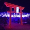 【栃木県足利市】あしかがフラワーパーク~激込&ただ綺麗なイルミネーション~