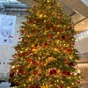 クリスマスツリーまとめ2020。