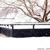 雪の黒塀 秋田県美郷町 後三年 雁の里