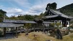 高台寺に行ってきた感想