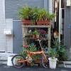 路上園芸 in tokyo