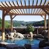 峠に囲まれた小さな村の温泉 うるぎ温泉こまどりの湯