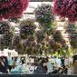 ここが楽園 -掛川花鳥園- #第3回ことり万博