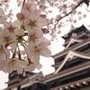 熊本地震から3か月、今こそ伝えたい熊本城3つの魅力。(+αもちょこっとね。)