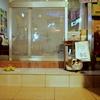 台湾 九フンには意外と猫がいた