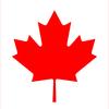 なぜカナダ国旗は「カエデの葉」が描かれているのか?