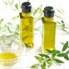 花粉症の季節は、特に油の捕り方に気をつけましょう