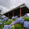 紫陽花の日中線記念館 2007年