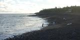 ハワイ島にある、世界最新のビーチ!