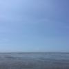 台湾のウユニ湖!高美湿地は子どもも喜ぶ干潟地帯
