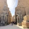 エジプト ルクソール 東岸 ルクソール神殿観光、持ち去られたオベリスク、キリスト教徒による破壊が顕著な遺跡...