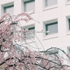 「日本史」「世界史」は暗記科目なのか?