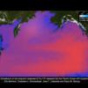 【放射能】太平洋が大変よ~福島原発事故で太平洋全体に拡散したセシウム-137の汚染