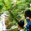 子供連れで楽しめるバリ島アクティビティ5選