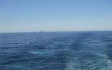 【外航船員の日常】大洋航海中の景色