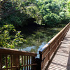 1泊2日でまるごと粟国島を観光(9)大正池