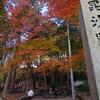 毘沙門堂の紅葉を愛でる