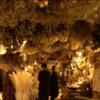 【京都】おすすめ!おしゃれカフェ(1)「花の中に埋もれるカフェ」