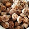 タイガーナッツの効果や食べ方わかってる?味を生かしたレシピが美味しいよ