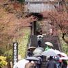 円覚寺(2017年4月)