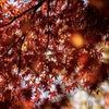 秋🍁から冬へ☃️
