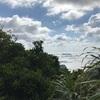 アサリの島流し 331日目 - 走れ!乳房山登山隊